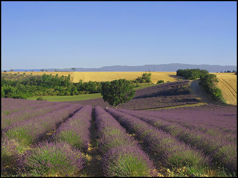 paysages, provence, france